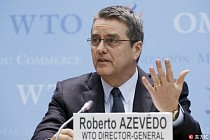China's role in WTO has increased significantly since its accession in 2001: WTO chief