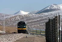 Qinghai-Tibet railroad transported 27 million passengers in 12 years